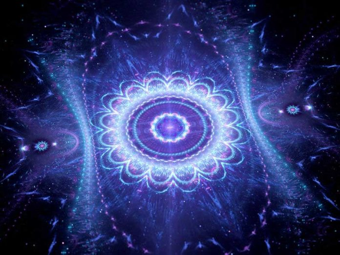 Astrologie Hindoue : Makara