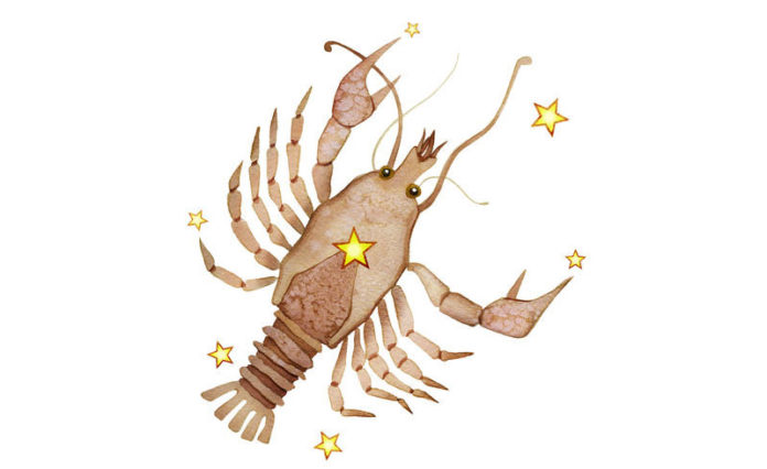 horoscope 2019 du Cancer