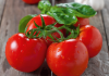rêver de tomate